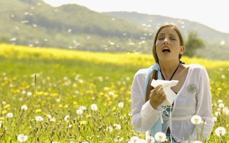Allergy and hay fever season - Mend Street Pharmacy